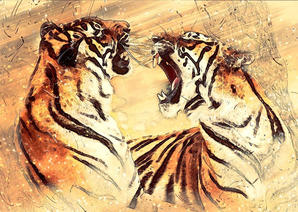 боевые искусства, картинка двух тигров, которые рычат друг на друга