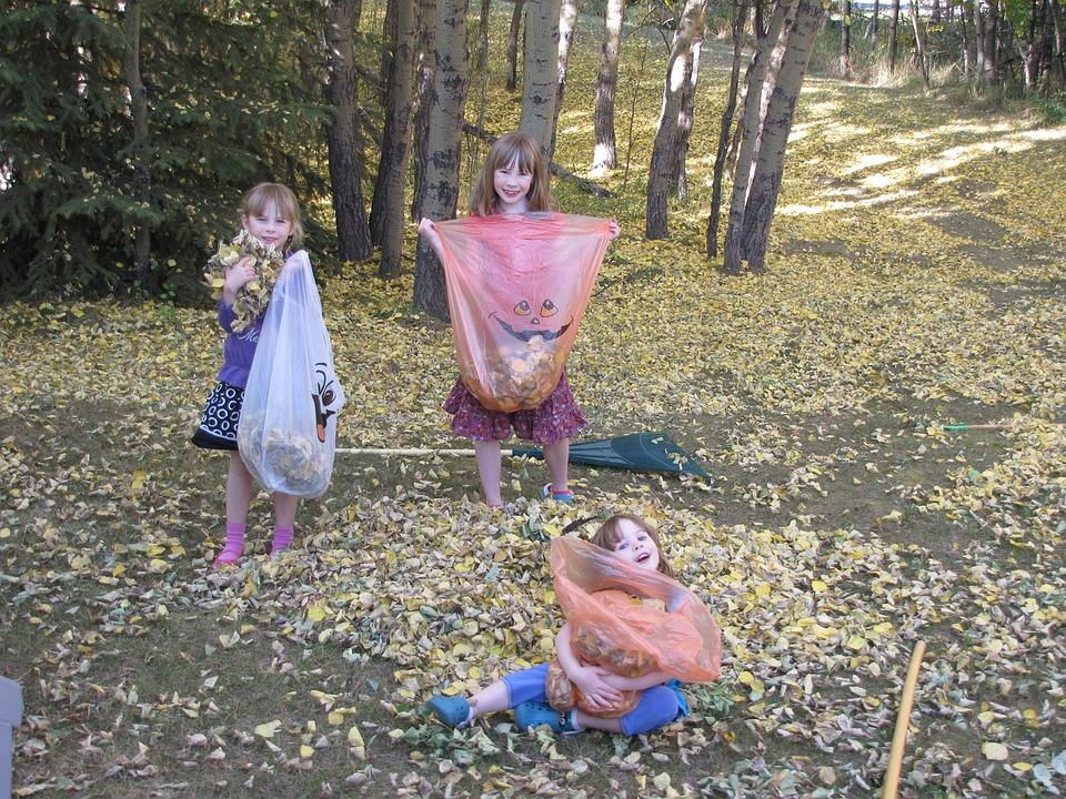 девочки убирают листья во дворе, рекомендации как приучить ребенка к порядку