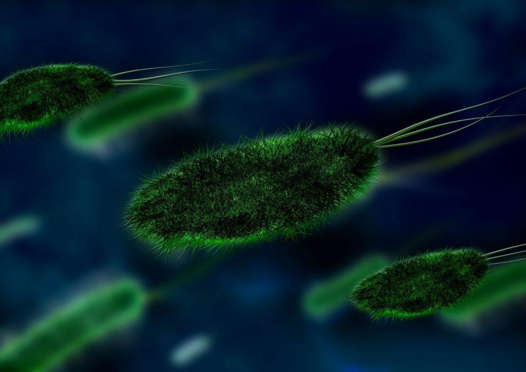 бактерии в организме, стрептодермия у детей