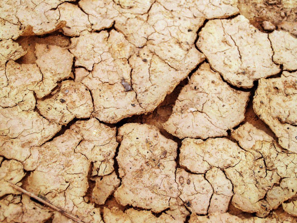 потрескавшееся сухая земля