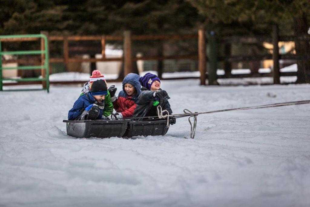 четверо детей катаются на больших санках по снегу